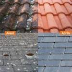paneaux maison ossature bois démoussage toiture 01 (4)