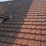 paneaux maison ossature bois démoussage toiture 01 (6)